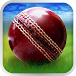 Cricket World Cup Fever HD Symbol