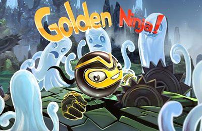 logo Goldener Ninja Pro