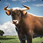 アイコン Bull simulator 3D