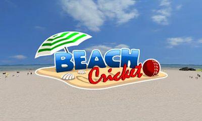 Beach Cricket скриншот 1