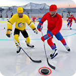 Ice hockey 2019: Classic winter league challenges Symbol