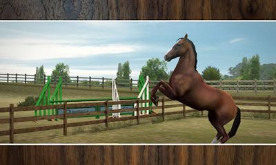 Simulation games My Horse for smartphone