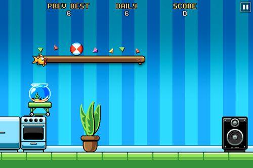 Fishbowl Racer für iOS-Geräte