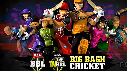 Big bash cricket capture d'écran 1