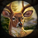 Wild animal jungle hunt: Forest sniper hunter Symbol
