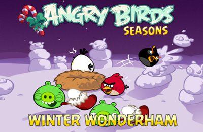логотип Злые Птички: В Холодную Зимнюю пору