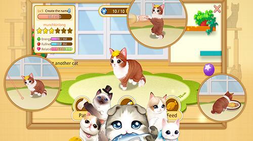 Line cat cafe auf Deutsch
