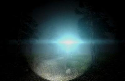 d'action: téléchargez Les Forêts Mystérieuses sur votre téléphone