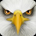 Ultimate bird simulator icono
