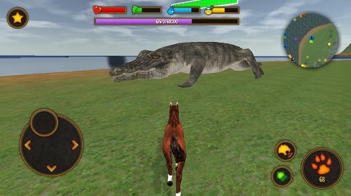 Clan of horse captura de pantalla 1