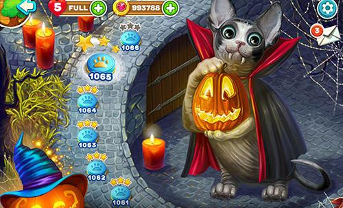 Arcade Cute cats: Magic adventure für das Smartphone