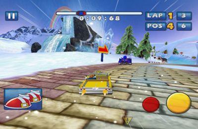 Les Courses de Sonic et de tous les Stars de SEGA