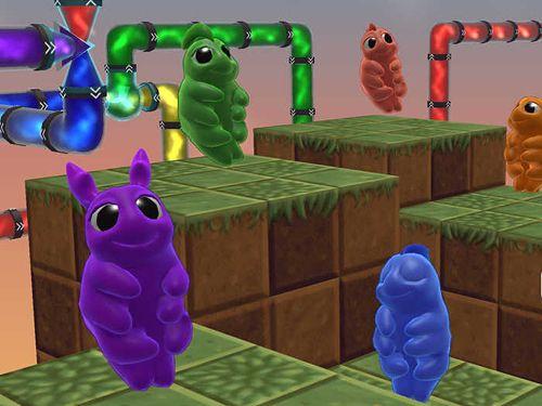 Arcade-Spiele: Lade Wasserbären auf dein Handy herunter