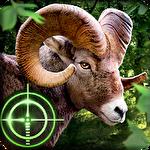 Wild Hunter 3d Game icon
