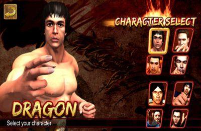 logo Des Drachens Rückkehr: Kampfkunst-Krieger