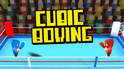Cubic boxing 3D Screenshot