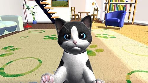 Daily kitten: Virtual cat pet in English