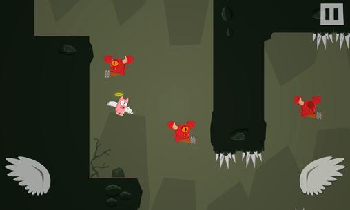 Свиньи не могут летать