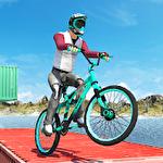 BMX master icon