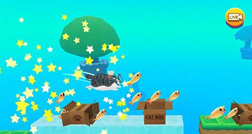 Kitty in the box 2 Screenshot