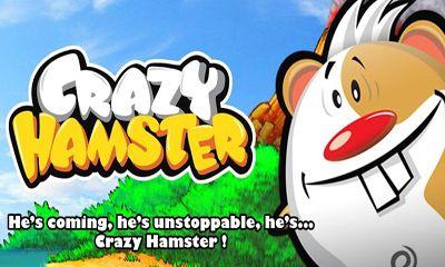 Скриншот Crazy Hamster на андроид