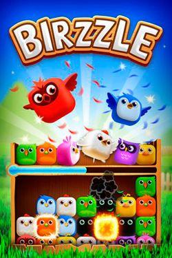 logo Birzzle