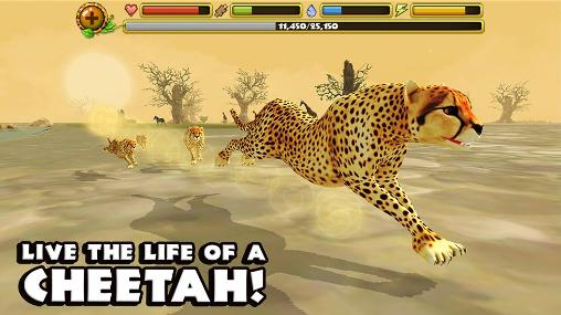 Cheetah simulator pour Android