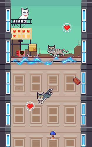 Cats jump! Screenshot