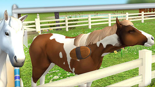 Simulation Horse world: Show jumping pour smartphone