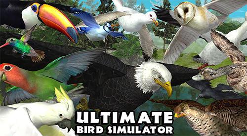 Ultimate bird simulator скриншот 1