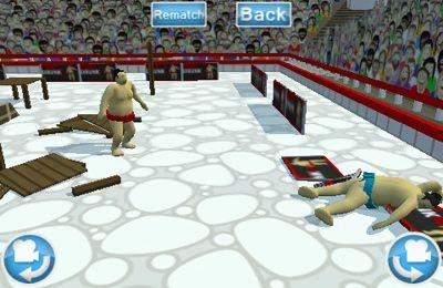 Screenshot Sumo Ringen 3D auf dem iPhone