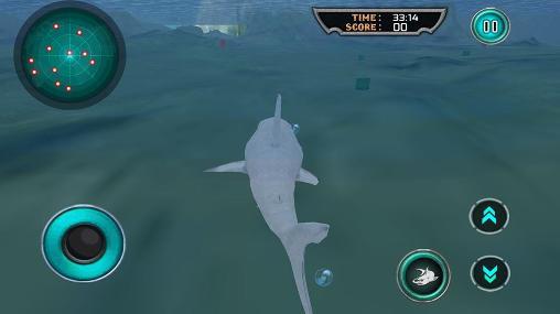 Simulator-Spiele Hungry white shark revenge 3D für das Smartphone
