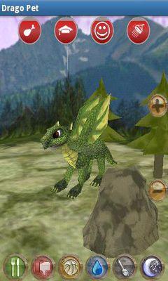 Drago Pet auf Deutsch