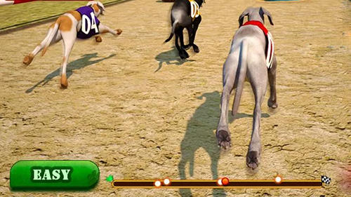 Dog race and stunts 2016 pour Android