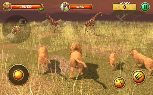 Wild lion simulator 3D capture d'écran 3