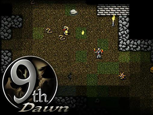 9th dawn скриншот 1