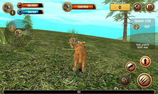 Wild cougar sim 3D for Android