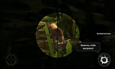 狩りについてのゲーム Deer hunter 2014 の日本語版