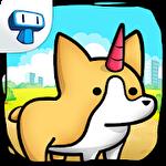 Corgi evolution: Merge and create royal dogs Symbol