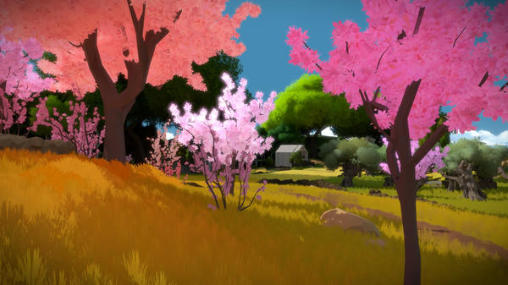 The witness capture d'écran 1
