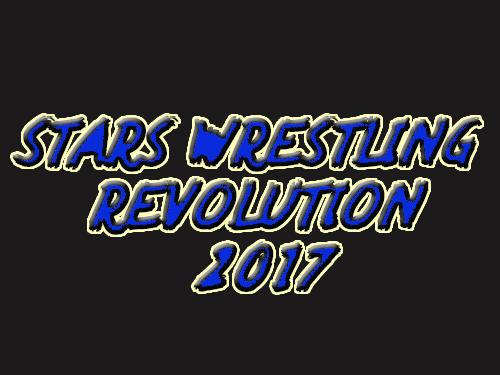 Stars wrestling revolution 2017: Real punch boxing ícone