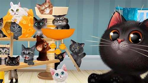 Haustiere Happy kitties auf Deutsch
