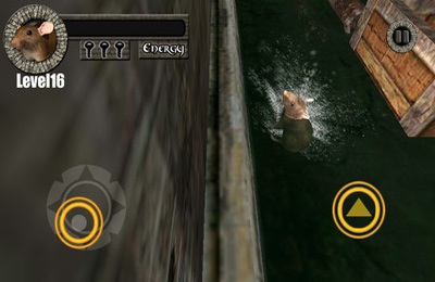 Kanal Ratten Rennen 3D! für iPhone