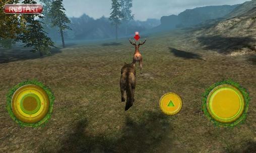 Real wolf simulator auf Deutsch