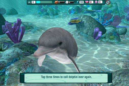 Delphin Paradies: Wilde Freunde auf Deutsch