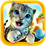 Cat simulator 2015 icon