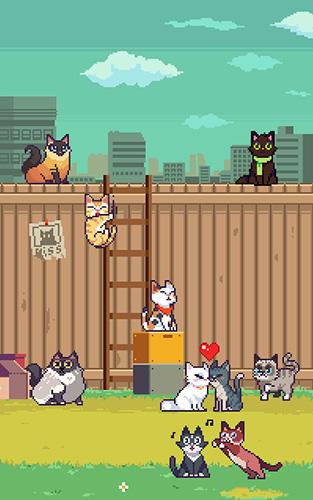 Pixelspiele Cats jump! auf Deutsch