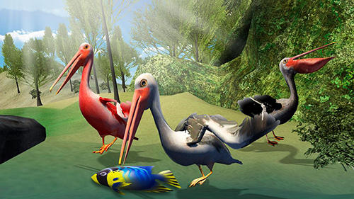 Pelican bird simulator 3D auf Deutsch