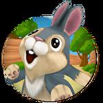 Bunny Run Symbol