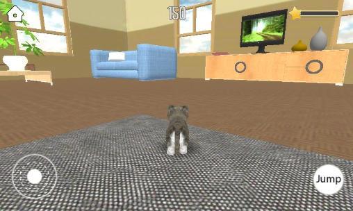 Pet simulator Screenshot